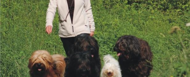 Hundezentrum